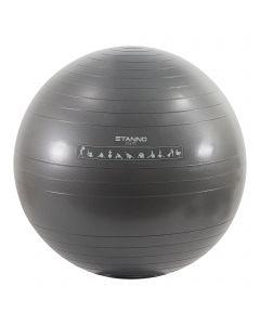 Stanno Yoga Bal 65CM