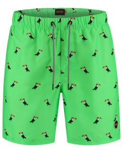 Shiwi Swim Short Tucan Men